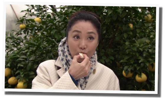 浅野温子 小京都連続殺人事件4