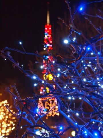 【顔文字】冬(51個) - かわいい・シンプル・クリスマス