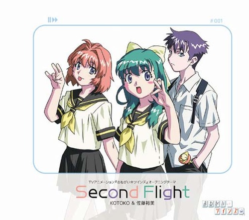 3038-secondflight-zn2o