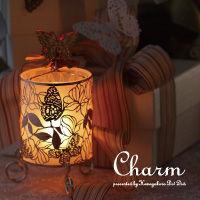 charm01
