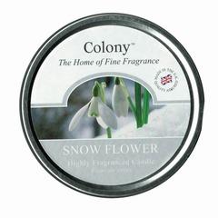 tin-snowflower