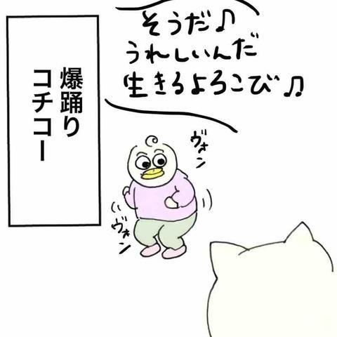 IMG_5815