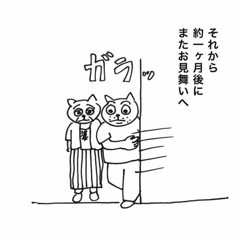IMG_9571