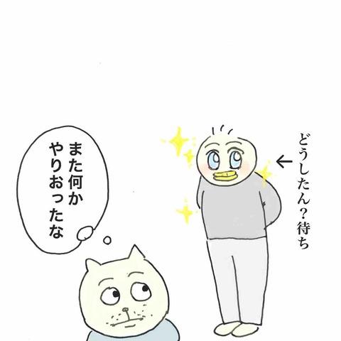 IMG_9913