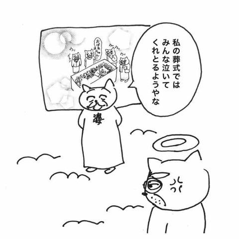 IMG_9683