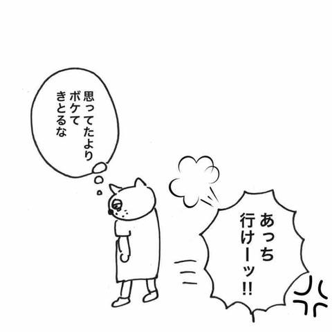 IMG_9716