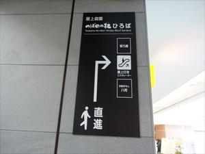 DSC00465_R