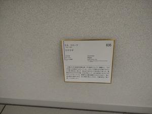 DSC04125_R