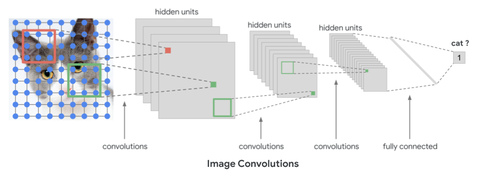 cat_image_convolutions