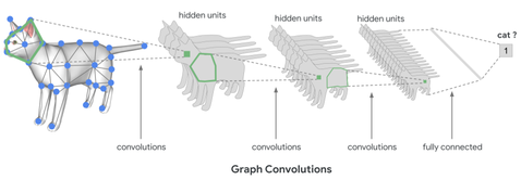 cat_mesh_convolutions