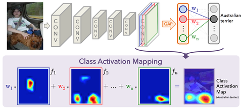 class_activation_mapping