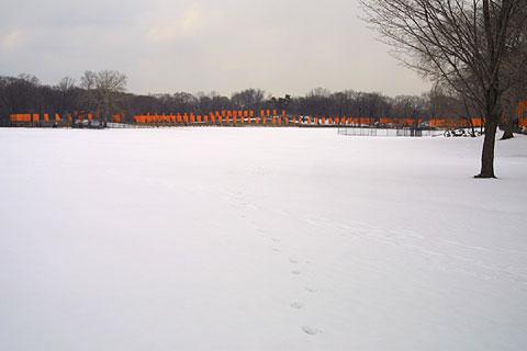 クリストのゲート@雪のセントラルパーク