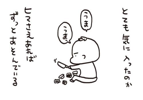 mixi2067