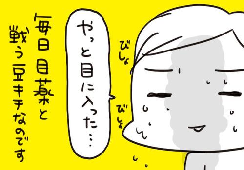 mixi2126333