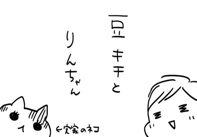 61c8daa4.jpg