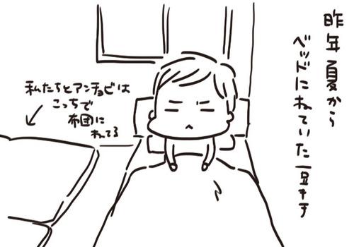 mixi20971