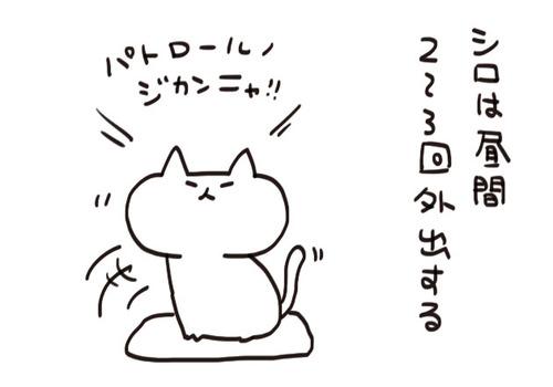 mixi2060
