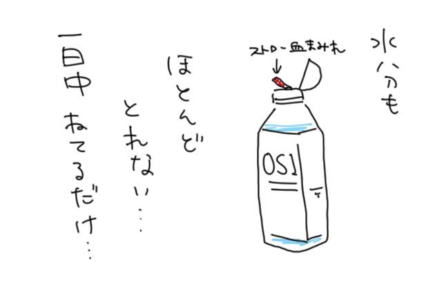 b10c3798.jpg