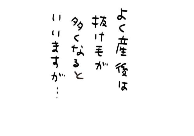 c0cf4eb2.jpg