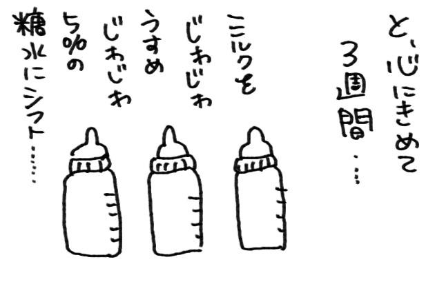 c453f003.jpg