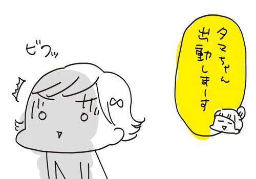f7a01127-s8466