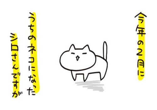 mixi2125948
