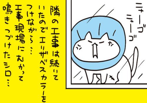 mixi2125958
