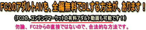 FC2_banner