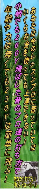 nonlisk_banner1