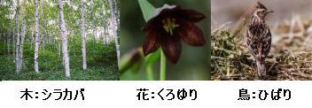 帯広市の木・花・鳥