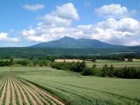 斜里岳の画像