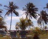 ホテルの庭