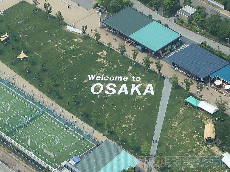 OSAKA芝生アート
