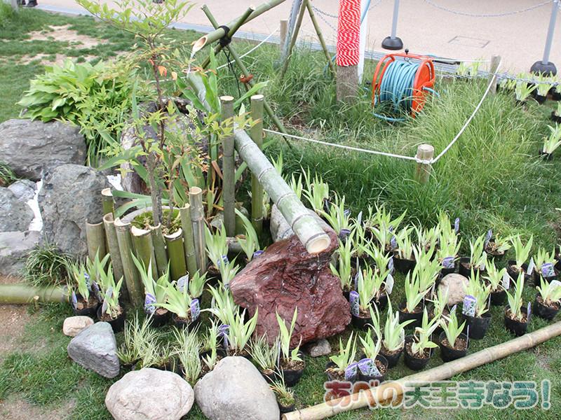 天王寺公園「てんしば」に日本庭園