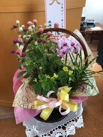 3種類のお花