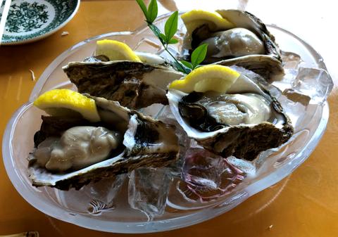 saga_trip_raw_oyster