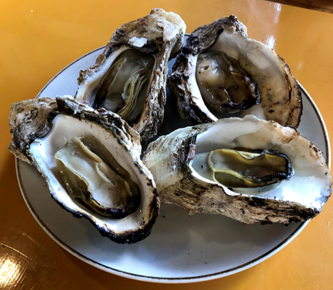 saga_trip_cooked_oyster