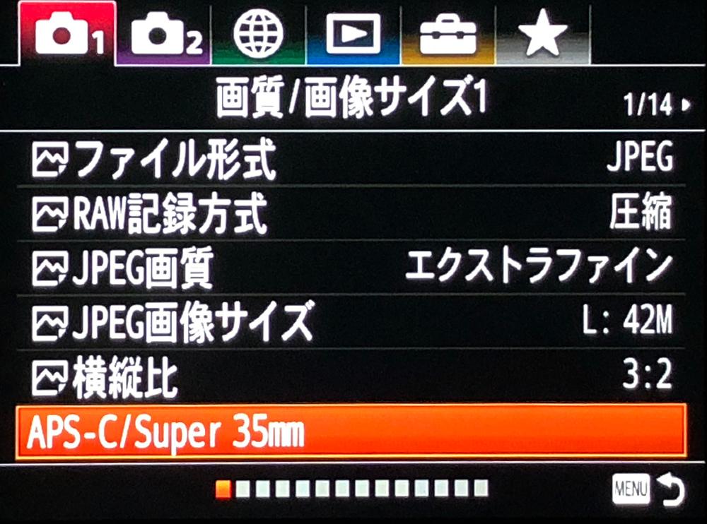 M1P1-APSCb
