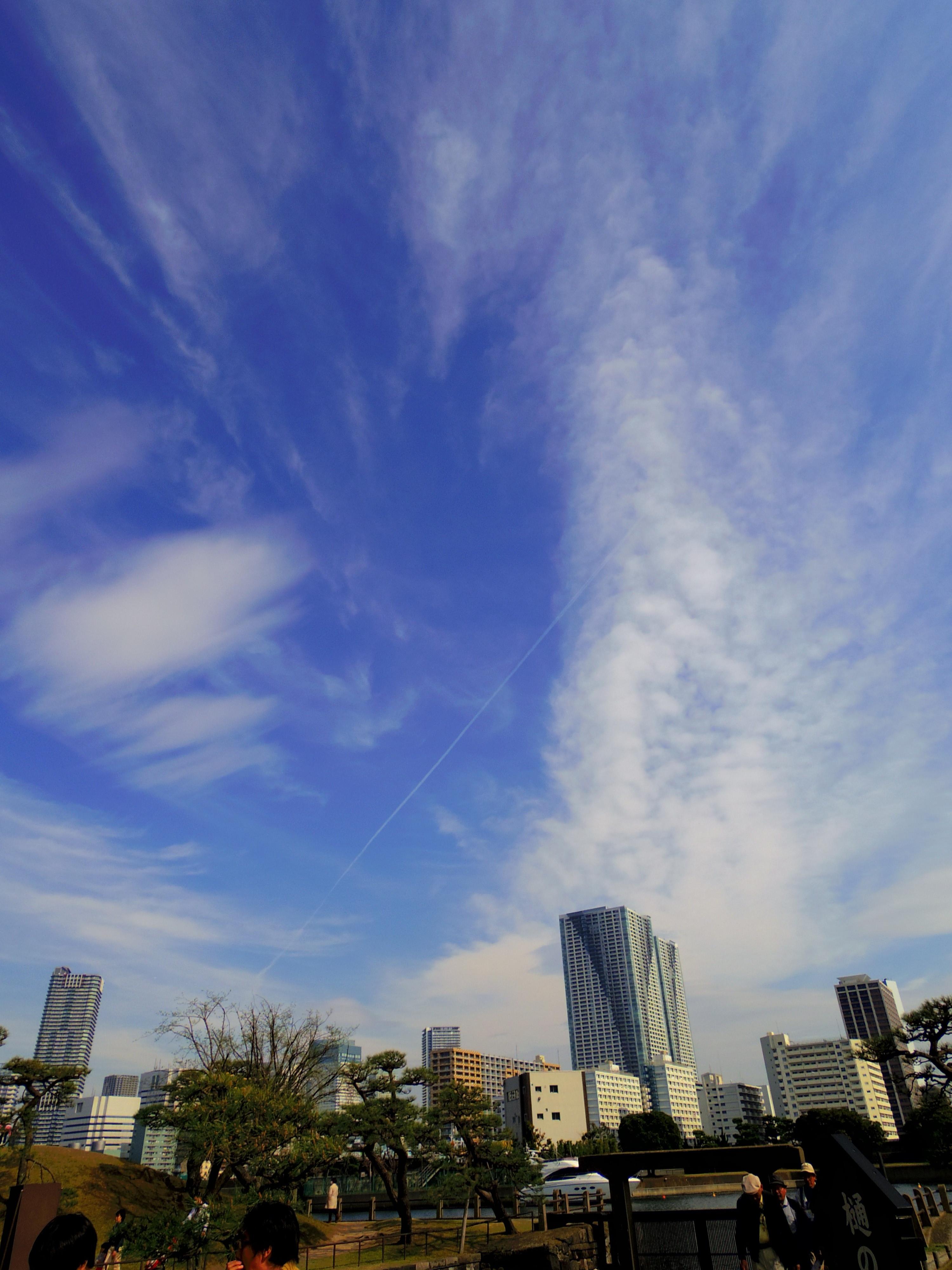 空と何かIMGP0253