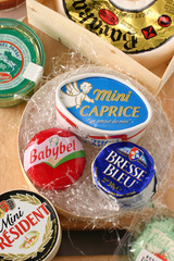 0314-cheese