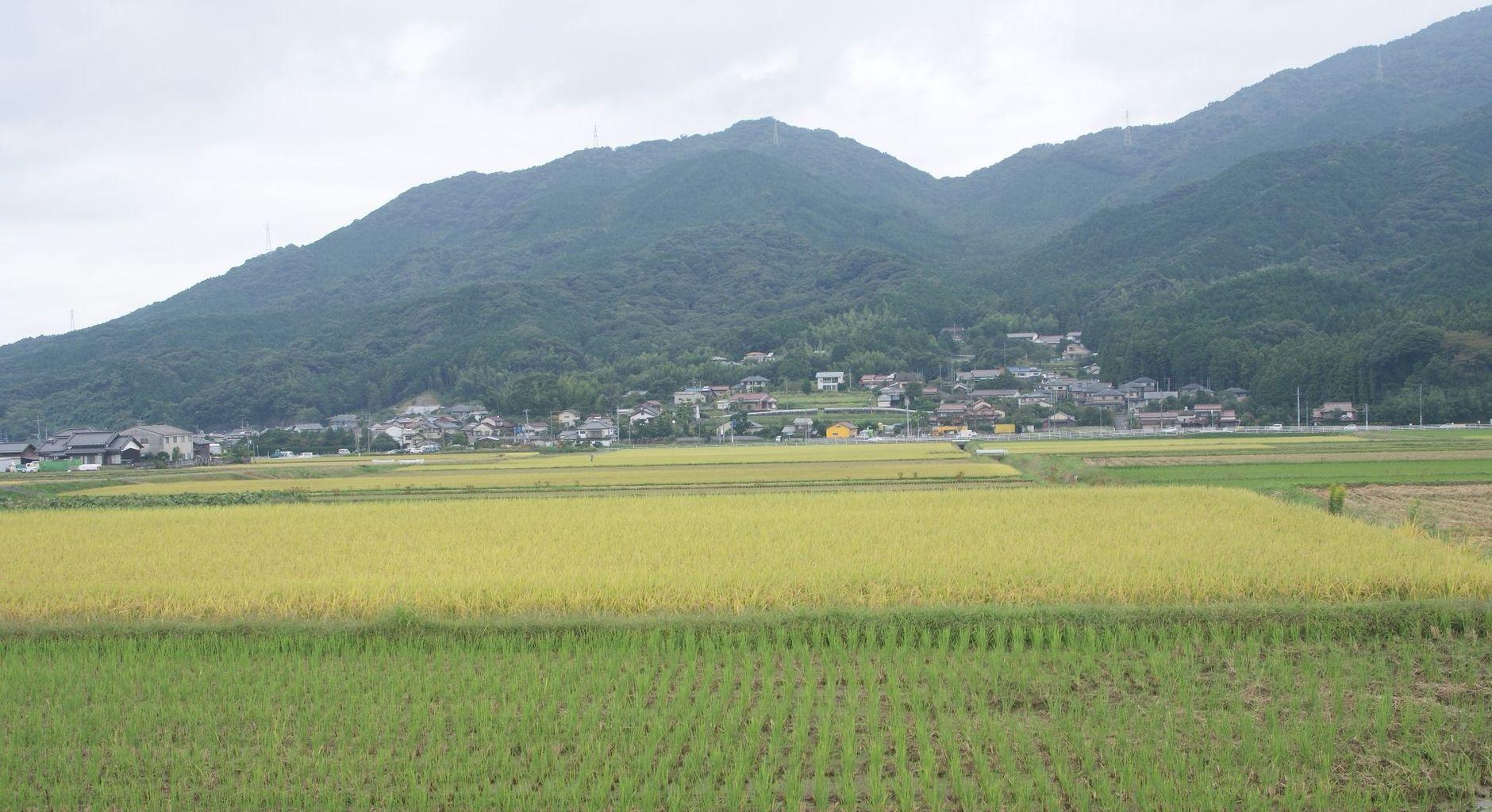 長丘歴史の会 : 福岡市南域の戦...