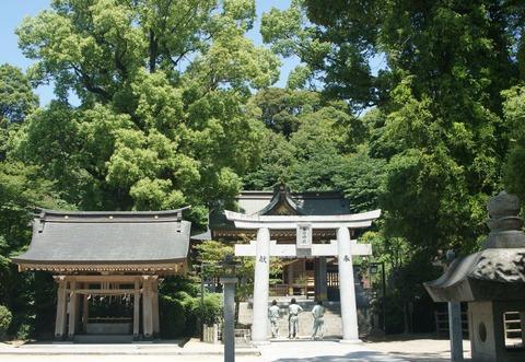 春日神社20 (2)