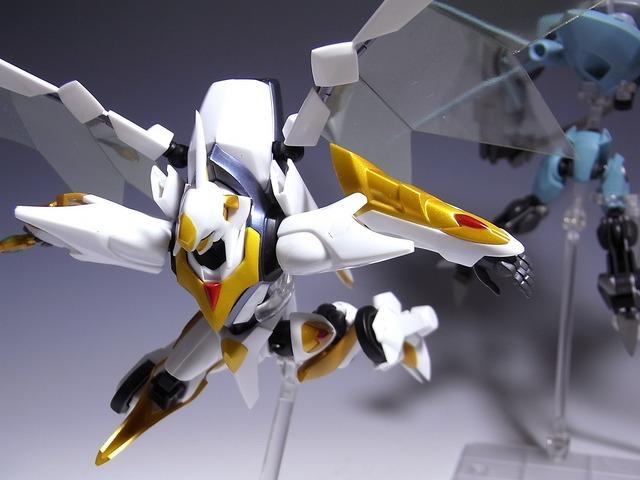 RIMG0063