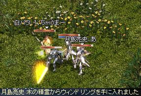 20070225_イベント森の風エリア