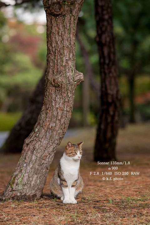 8 1-640 ISO250-1 (1 - 1)