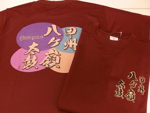 八ヶ嶺Tシャツ2012 004