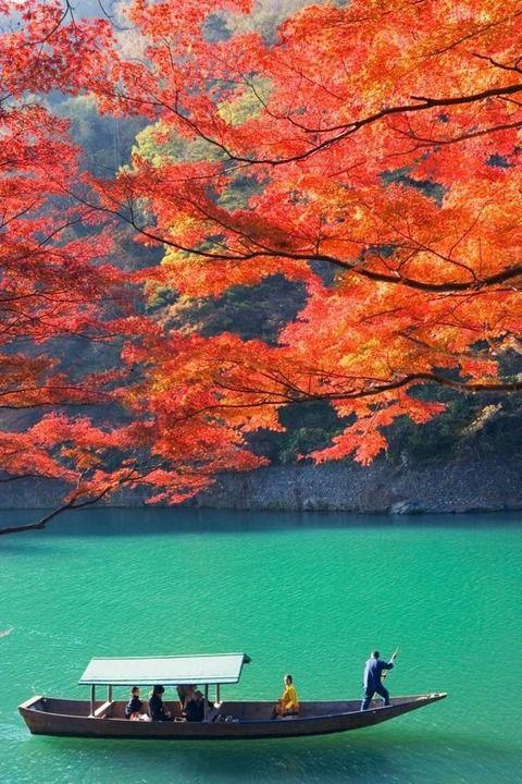 美しい国これが日本だバカヤロー!! (※画像あり)