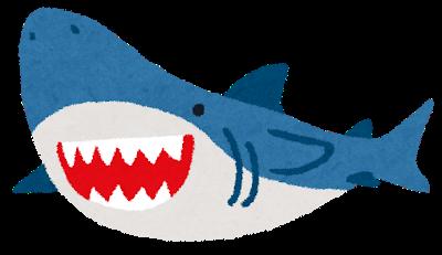 IKEAの例のサメ、店員が釣りに行った結果大漁だった模様wwwwwwwww