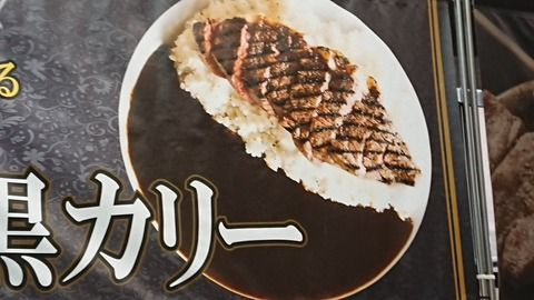 【悲報】 東京ゲームショウの「ステーキカレー(1500円)」の理想と現実wwwwwwwww