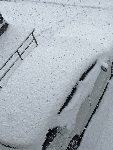 snow20170115a